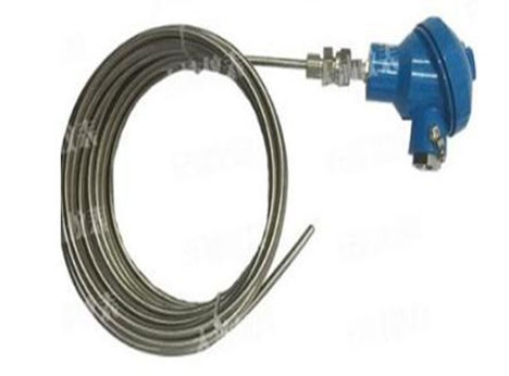 浅析工业用铠装热电阻的分类有哪些?